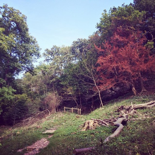 Nowy post na blogu Rozpisaam si o jesieni  kilkahellip
