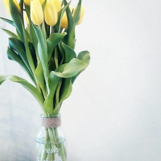 Fresh fresh onlyfreshflowers springisthatyou yellow kwiaty tulipany takaroda wiosenne dodatki