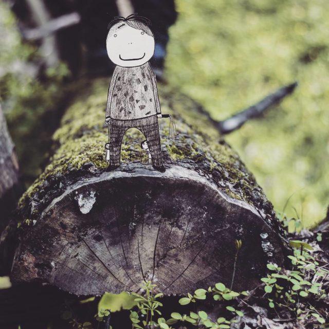 Chc wrci do lasu! las lenymech drzewo alekrysuje woodswalk foresthellip