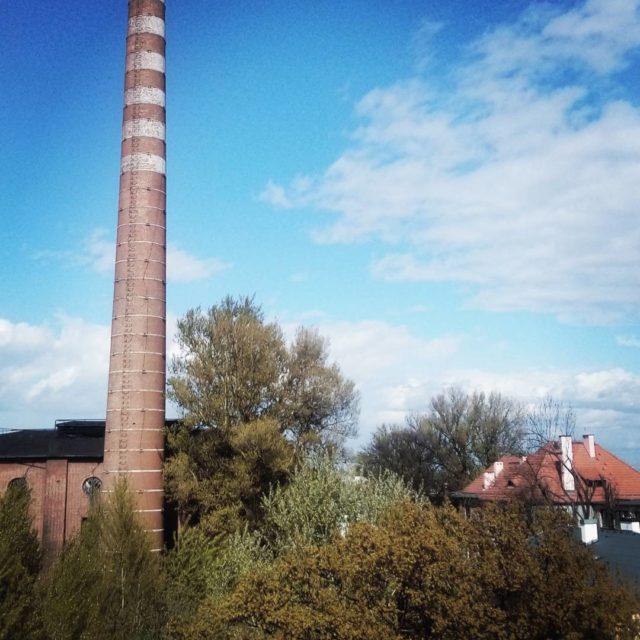 Komin porasta widokzokna kominnahoryzoncie wro ziele kaprynawiosna viewfromthewindow chimney trees