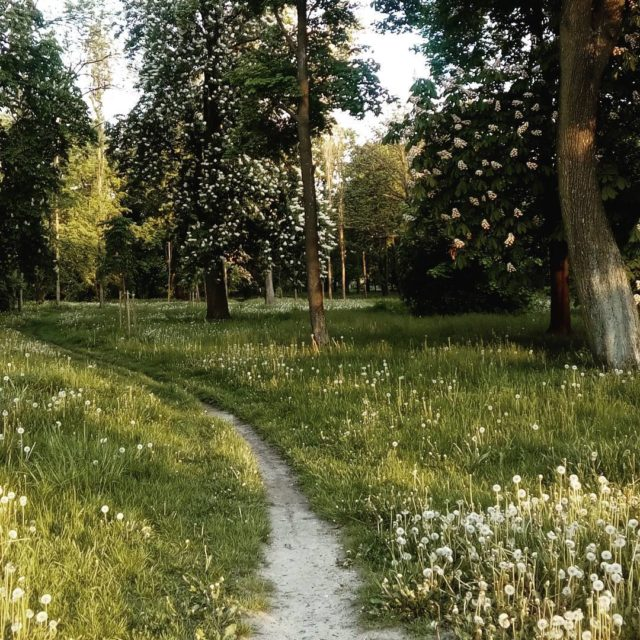 Pierwszy jogging zaliczony wrocaw parkskowroni joggingtime maj biegambolubie nogijakzwaty endorfiny